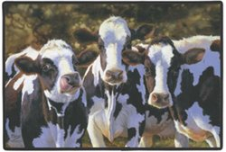 Dairy Queens Cow Doormat Holstein Black White Bonnie Marris